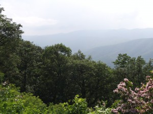 First overlook on the Blue Ridge Parkway